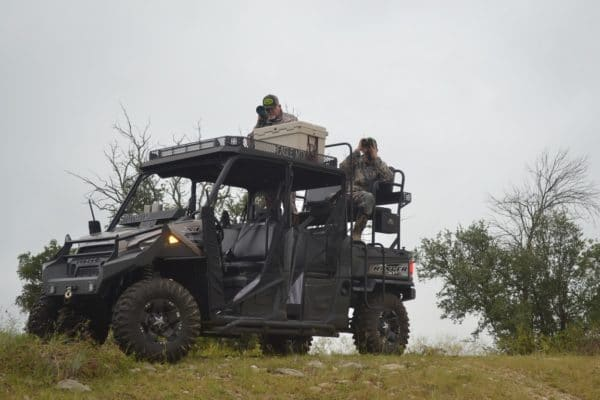 cat-polaris-ranger